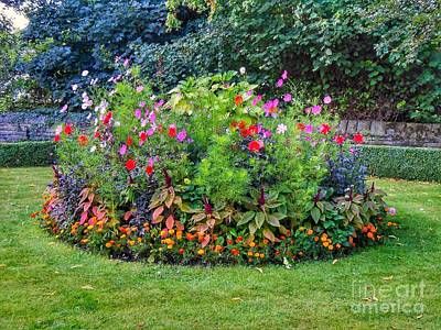Photograph - The Flower Bed In Pendle by Joan-Violet Stretch