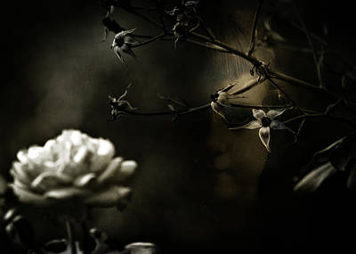 Photograph - The Flower Girl by Rebecca Sherman