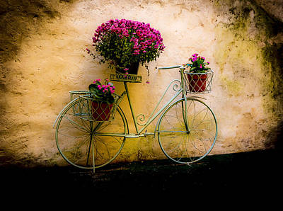 Photograph - The Flower Messenger by Francisco Gomez