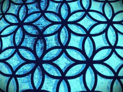 Photograph - The Flower Of Life by Karl Reid