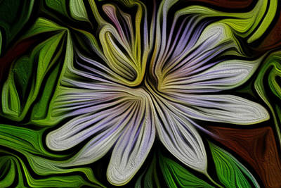 Passionfruit Digital Art - The Flower Of Passion by Jane Holloway