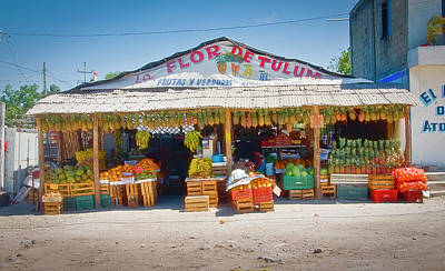 Photograph - The Flower Of Tulum by Gary Shepard