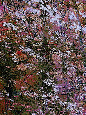 Mixed Media - The Flowering Tree by Nancy Kane Chapman