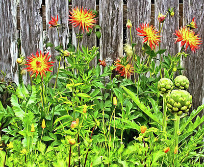 Photograph - The Flowers Along The Fence  by Thom Zehrfeld