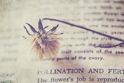 The Flower's Job Art Print