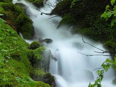 Photograph - The Flowing Brook by DeeLon Merritt