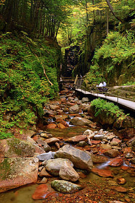 Photograph - The Flume by James Kirkikis