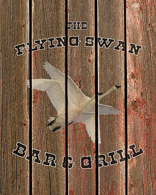Photograph - The Flying Swan Bar And Grill by TL Mair