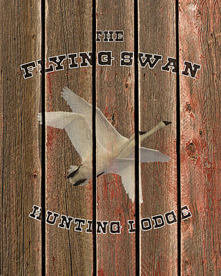 Photograph - The Flying Swan Hunting Lodge by TL Mair
