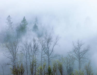 Photograph - The Fog 1 by Jonathan Nguyen