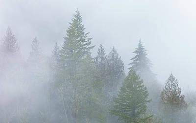 Photograph - The Fog 2 by Jonathan Nguyen