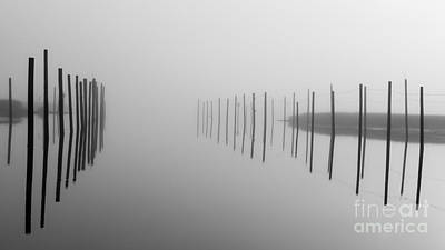 Photograph - The Fog by Alissa Beth Photography
