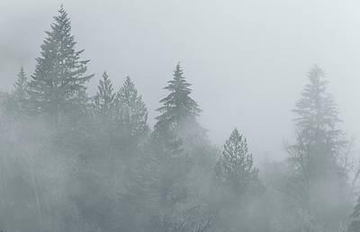 Photograph - The Fog Bw by Jonathan Nguyen