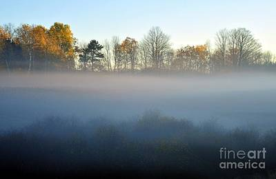 Photograph - The Fog Comes On Little Cat Feet by Terri Gostola