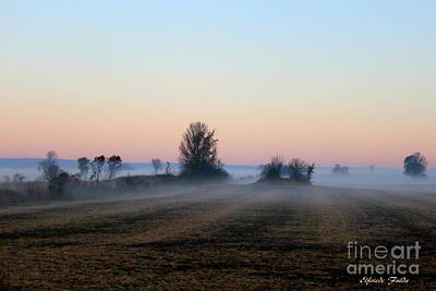 Photograph - The Fog by Elfriede Fulda