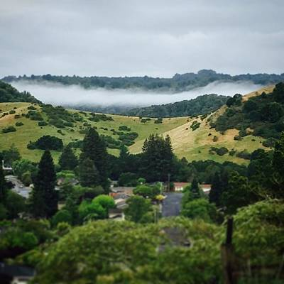 California Wall Art - Photograph - Fog Hovering Over The Reservoir by Nancy Ingersoll