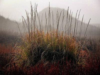 Gerald Monaco Photograph - The Fog Of Autumn by Gerald Monaco