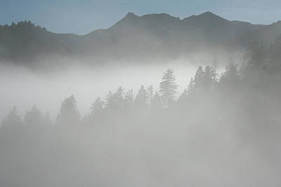 Photograph - The Fog Over Yonder by Ric Bascobert