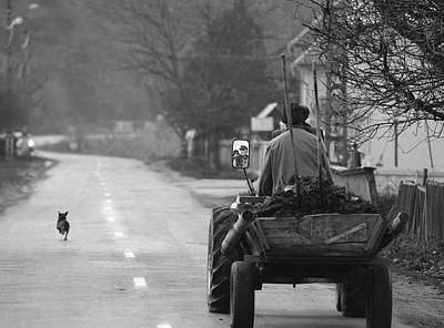 Old Man Photograph - The Followers by Mihnea Turcu