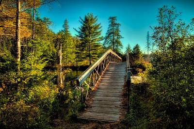 Photograph - The Footbridge At Nicks Lake by David Patterson