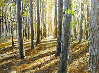 The Forest And The Trees Art Print