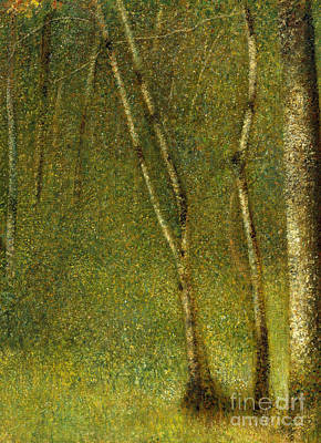 Light And Dark Painting - The Forest At Pontaubert, 1881 by Georges Pierre Seurat
