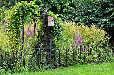 Photograph - The Forgotten Garden by Alan L Graham