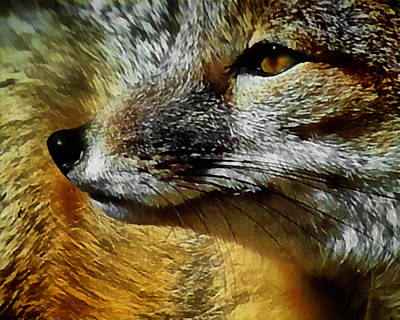 Digital Art - The Fox 9 by Ernie Echols