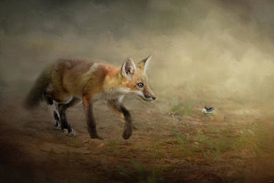 Photograph - The Fox And The Butterfly by Jai Johnson