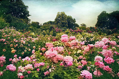 Photograph - The Fragrant Garden by Jessica Jenney