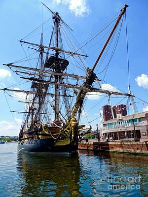 Food And Flowers Still Life Rights Managed Images - The French Ship Hermione Royalty-Free Image by Doug Swanson
