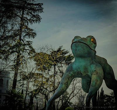 Photograph - The Frog Of Fortune Sculpture by Henri Irizarri