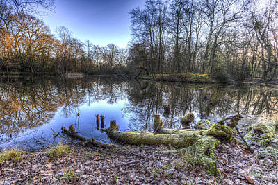 Photograph - The Frosty Morning Pond by David Pyatt