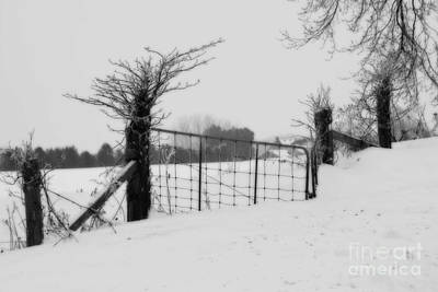 Photograph - The Frozen Gate Black And White by Cathy  Beharriell