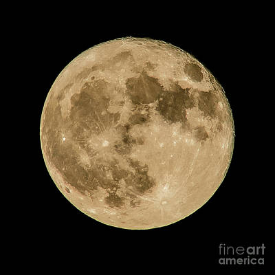 Photograph - The Full Hunters Moon by Nick Zelinsky
