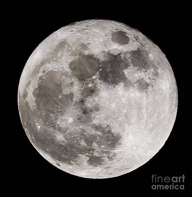 Photograph - The Full Moon by Colin Rayner