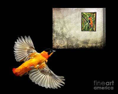 Red Bishop At The Gallery Art Print by Jennie Breeze