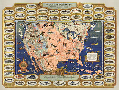 Animals Drawings - The Game Fish Cyclopedia -  Game Fish - Angling Chart of the USA - Illustrated Game Fishing Chart by Studio Grafiikka