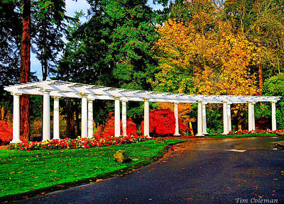 Wapato Photograph - The Garden At Wapato Park by Tim Coleman