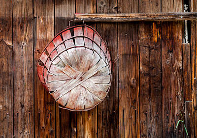 Photograph - The Garden Basket by Fran Riley