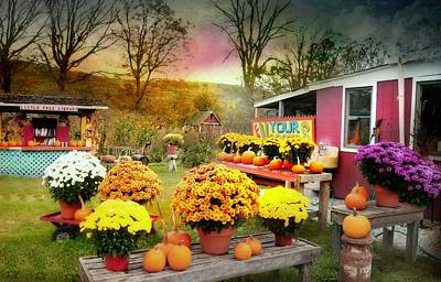 Photograph - The Roadside Garden Shop by Diana Angstadt