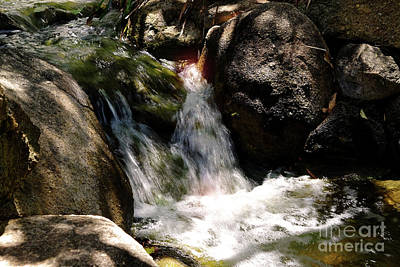 Photograph - The Garden Fairies Waterfall by Tracey Everington