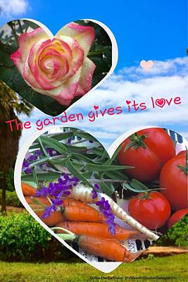 Photograph - The Garden Gives It's Love by Dorothy Visker