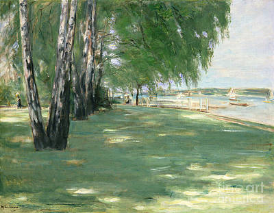 Tree Leaf On Water Painting - The Garden Of The Artist In Wannsee by Max Liebermann