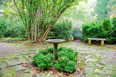 Photograph - The Garden The Gate And The Bird Bath by David Arment