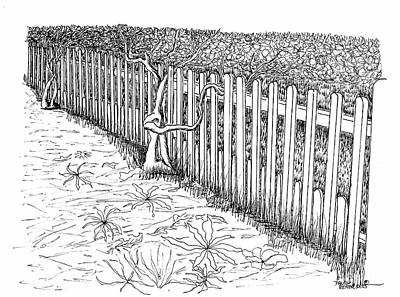 Reconstruction Drawing - The Garden Trellis Fence by Dawn Boyer