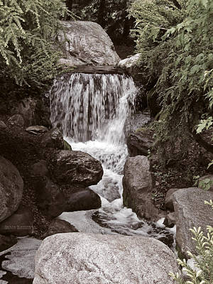The Garden Waterfall Art Print by Garth Glazier