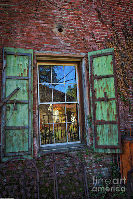 Photograph - The Garden Window by Mitch Shindelbower