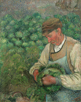 The Gardener - Old Peasant With Cabbage Art Print by Camille Pissarro