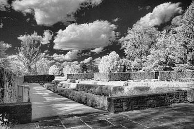 Photograph - The Gardens In Ir by Michael McGowan